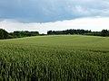 Wide Lands (75038143).jpeg