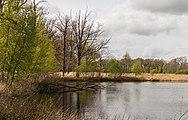 Wijnjeterper Schar, Natura 2000-gebied provincie Friesland 022.jpg