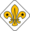 WikiProject Scouting fleur-de-lis diamond.png