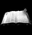 Wiktionary-logo-mainportal.png