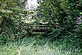 Woods Mill, Sussex Wildlife Trust, England - bridge across overgrown stream.jpg