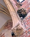 Wrocław archcatedral corbels.jpg