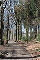 Wuppertal Ronsdorfer Anlagen 2015 046.jpg