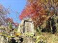 Yabakeimachi Oaza Shinyaba, Nakatsu, Oita Prefecture 871-0422, Japan - panoramio (3).jpg
