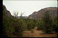 Zion National Park ZION9555.jpg