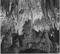"""Formations along the wall of the Big Room, near Crystal Spring Home, Carlsbad Caverns National Park,"" New Mexico., 1933 - NARA - 520048.tif"