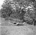 """""""Seni"""" s košem za gnoj vlačit 1951.jpg"""