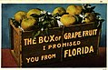 """The Box of Grapefruit I Promised You From Florida"" (10724664444).jpg"
