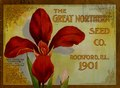 (Catalog of) the Great Northern Seed Co., 1901 (IA CAT31284198).pdf