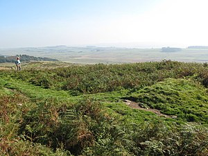 Milecastle 44 - The site of Milecastle 44