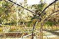 ® S.D.I. MADRID PARQUE DEL OESTE - ROSALEDA - ANILLO - panoramio.jpg