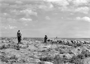 Ödsligt landskap med herdar. Fokas kapell i bakgrunden. Milia - SMVK - C00378.tif