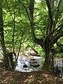Το ποταμι της Δροσοπηγής Φλώρινας.jpg
