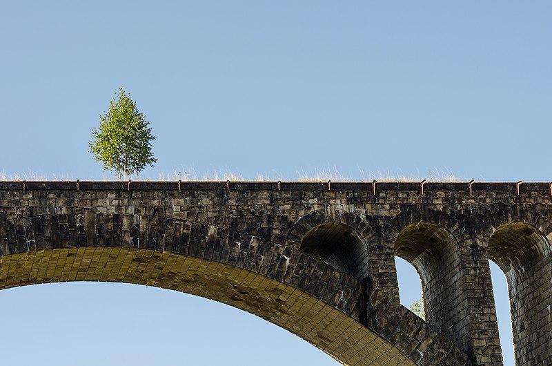 Арка старого залізничного мосту у Ворохті. Найкраща світлина Івано-Франківської області 2017. Автор фото — Роман Наумов, вільна ліцензія CC BY-SA 4.0