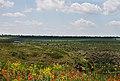 Гранітно-степове Побужжя. Вид зі скель. 01.jpg