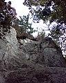 Меловые скалы - panoramio - Сергій Борисенко.jpg