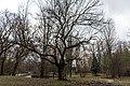 Симферополь, Варламов, 2013, 39.jpg