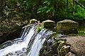 Споменик природе Клисура Осаничке реке - детаљ 001.JPG