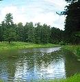 Федосеевский пруд в Богашёво IMG 1263 IMG 1266-4 images.jpg