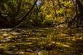 پاییزدر ایران-قاهان قم-Autumn in iran-qom 34.jpg