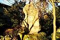 刈谷市椎の木屋敷2.jpg