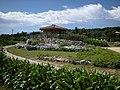 古宇利島の公園 - panoramio.jpg