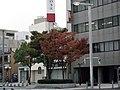 宇部新川駅前 - panoramio (5).jpg
