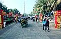 海南国际旅游岛——海口万绿园春节景观(东北向) - panoramio.jpg