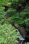 白岩の滝 - panoramio (5).jpg