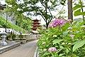 長谷寺 - panoramio (8).jpg