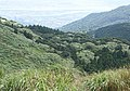 陽明山遠眺淡水河 View of Damsui River from Yngmingshan - panoramio.jpg