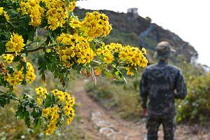 """우도가 숨ː쉰다 - 서해 NLL의 무인도 """"우도"""" 그 곳을 지키는 장병들의 사진이야기 □ 'Wu-do' the uninhabited island on NLL of the West Sea and Photo Stories of Soldiers There (10942503204).jpg"""