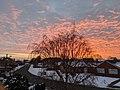 -2021-02-12 Dawn over Beech Avenue, Bourne, Lincolnshire.jpg