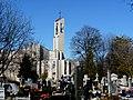 - Cmentarz Nowofarny - panoramio (6).jpg