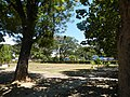 0136jfBinalonan Pangasinan Province Roads Highway Schools Landmarksfvf 07.JPG