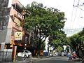 05010jfLeon Guinto Street Wynn Plaza Pedro Gil Street Paco Malate Manilafvf 01.jpg