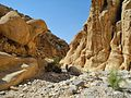 07 Wadi Ghuweir Trail to Feynan - The Wadi Is Rarely Visited by Tourists - panoramio.jpg