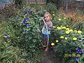 100 4013 Я люблю квіти.JPG