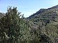 11330 Termes, France - panoramio (34).jpg