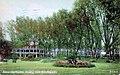 1910 - Dorney Park Grove.jpg