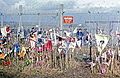 1985 Molesworth fence and CND banners.jpg