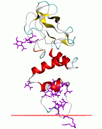 Thrombin - Image: 1nl 2 opm