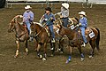 2008 Kentucky State Fair Roping Show (2765079725).jpg
