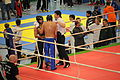 2010-02-20-kickboxen-by-RalfR-22.jpg