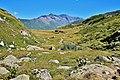 2012-08-10. Refuge du col du petit mont Cenis.JPG