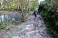 2014-10-04 Wermelskirchen-Altenberg. Reader-33.jpg