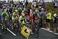 2014 Tour de France stage 2, near Littleborough (peloton).JPG