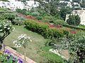 2016 Capri 17.jpg