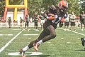 2016 Cleveland Browns Training Camp (28075910223).jpg
