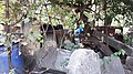 20171004 140903 Old Jewish Cemetery in Bacău.jpg
